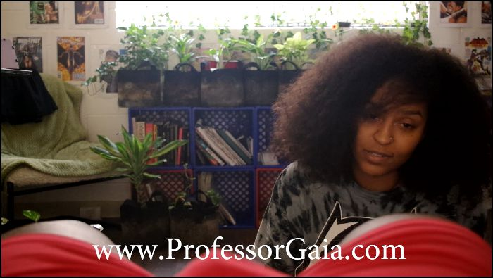 professor-gaia-tribute-to-a-king-2018-02-18 d5rSvB Preview