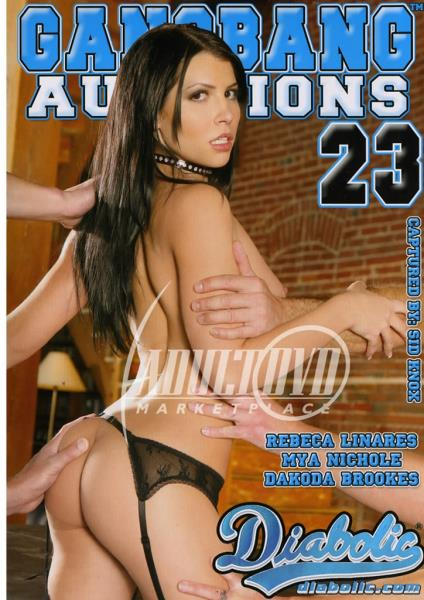 Gangbang Auditions 23 (2009/WEBRip/SD)