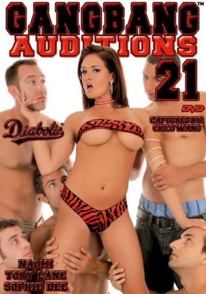 Gangbang Auditions 21 (2006/WEBRip/SD)