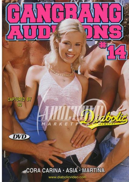 Gangbang Auditions 14 (2005/WEBRip/SD)