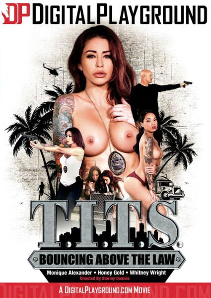 T.I.T.S: Bouncing Above The Law (2018/WEBRip/HD)