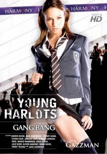 Young Harlots – Gang Bang (2009/WEBRip/HD)