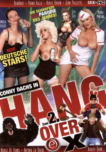 Hang Over X 2 (2013/DVDRip)