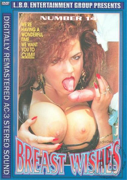 Breast Wishes 14 (1994/DVDRip)