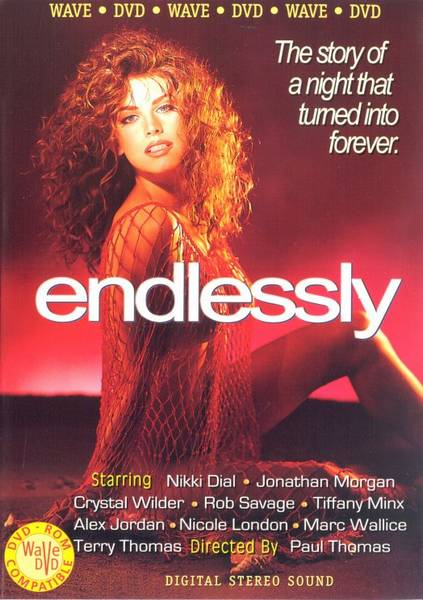 Endlessly (1993/DVDRip)