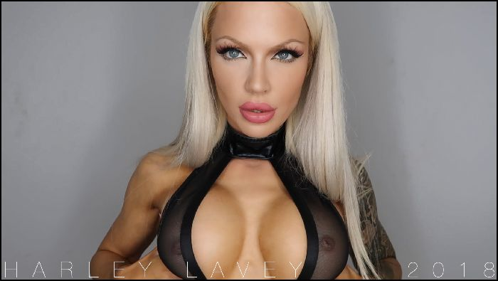 HarleyLaVey Pay My Perfect Tits Preview