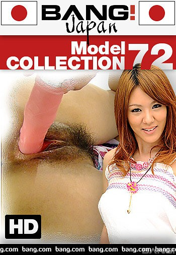 Model Collection 72 (2018)