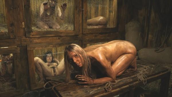 Amateur – Rabbit hutch (2019/HorrorPorn.com/HD1080p)