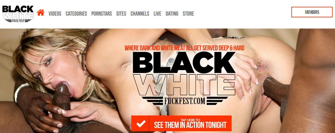 Blackwhitefuckfest update0701 SiteRip