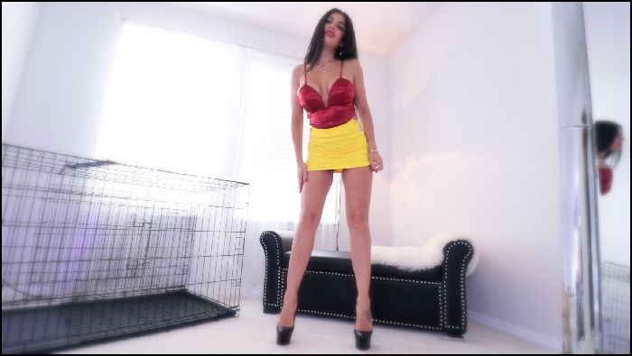 QueenRegina – Home Alone naughty Task (manyvids.com)