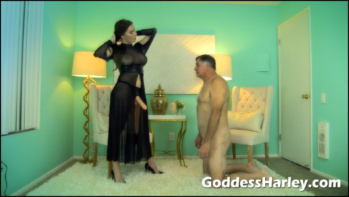 AMAZON Goddess Harley - Cum Penalty 02 - Suck Me Off Preview