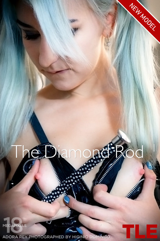 125083199__thelifeerotic-the-diamond-rod-1-cover0a41247101a55fb8.jpg#